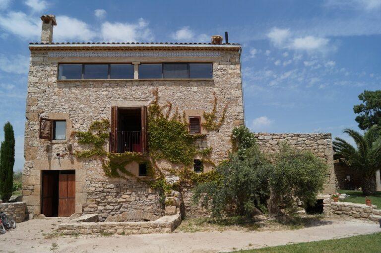 Imatge de la façana principal de la casa amb l'olivera